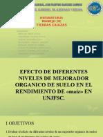 EFECTOS DE MEJORADORES ORGANICOS - MAIZ