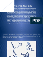 Polymer-In-Our-Life (1).pptx