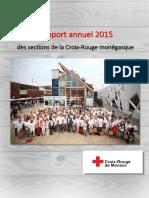 RAPPORT 2015 Général.pdf
