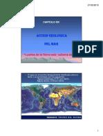Cap 14 Acción Geológica Del Mar-15