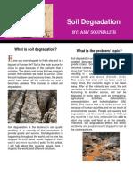 soil degradation  pdf