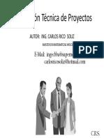 Puentes - Ing. Carlos Rico
