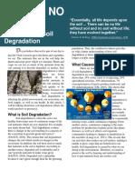 soil degradation article mikaila