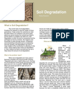 english final soil degradation