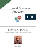 uca pdf