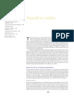 Capítulo 12.pdf