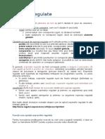 Js13 - Validare Cu Expresii Regulate