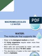 Biology Water