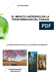 Conceptos Basicos de Medio Ambiente