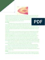 penjelasan umum fasciolopsis buski