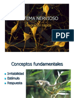 iiimedio-sistemanervioso-ppt11-140821080302-phpapp01.pdf