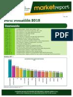 Reporte 2015 Cpi