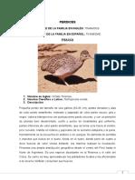 FLORA Y FAUNA DE AQP.doc