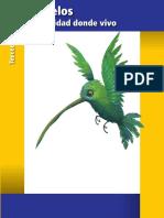 Morelos.3ero.entidad.2014 2015.CicloEscolar.com