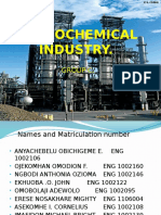 Petrochemical Industry1