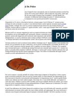 Storia Degli Orologi Da Polso