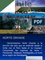 zonas-naturales-de-chile1 (1).ppt