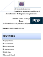 Situacao de Pastos em Mocambique