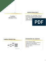 Aula 1 e 2 - Cadeia Produtiva