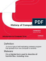 A Brief History of the Computer Virus