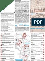 FFF_K-flyer
