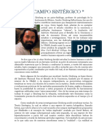 Campo Sintérgico.pdf
