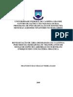 REVEGETAÇÃO DE ÁREAS DEGRADADAS DA CAATINGA.pdf