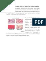 Características Generales de Los Tejidos Del Cuerpo Humano 3r0.