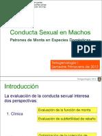 conductamachos_2012