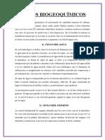 40 CICLOS BIOGEOQUÍMICOS.docx