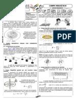 aula11_campo_magnetico.pdf