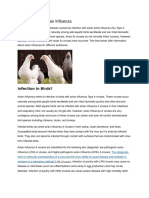 Information on Avian Influenza.doc