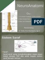 Responsi Neuroanatomi.pptx