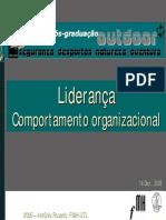Liderança Comportamento Organizacional