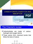 Sự Tiêu Hóa Và Hấp Thụ Carbonhydrate