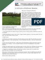 Grow a Wildflower Meadow with Cynthia Brian