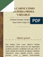 CARNE Mat Prima Var2