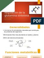 Glutamina-sintetasa_regulación