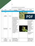 Paper Pest and Disease_Dickdoyo Langgeng