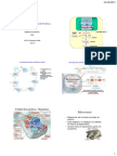 GEN04-Código Genético e Biossintese de Proteínas