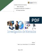 Proceso Total Analisis Investigación Cualitativa Informe Final-MairaLLovera