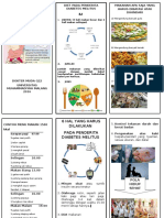Leaflet- DIET Dm