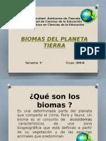 Presentación10.pptx