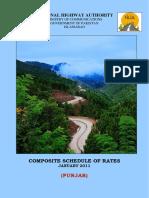 CSR-2011-Punjab..pdf