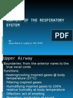 Respiratory Ana Physio