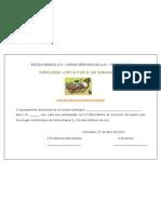 Certificado participação