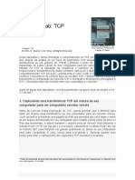 Pratica TCP Ethereal Kurose Traduzido