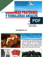 Gramíneas Pratenses y Forrajeras (Rubén-uptep)