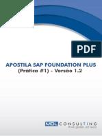 SAP Foundation (Prática1)_v1.1