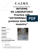 Informe Organica Ceanit (Proteinas)